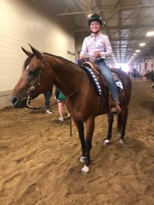 Indiana State Fair Western Horse and Pony results for Decatur County